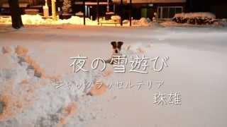 夜の公園でふっかふっかの雪遊び.