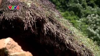Ký sự vùng biên: Đất Lào Cai; Tập 2: Lên Y Tý ngày mùa