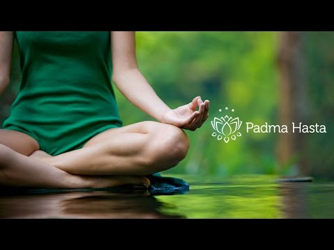 Padma Hasta - ¿Quiénes somos?