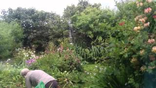 Time lapse Scottish gardening