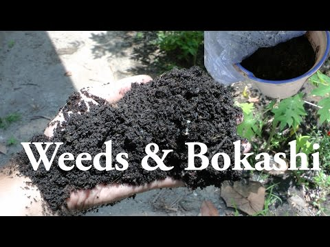 Terra Preta Fermentation! - How to use weeds in Bokashi Composting!
