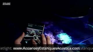 pantalla led zetlight ufo acuarios marinos reef