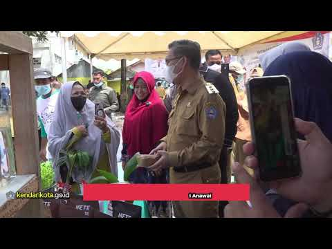 Walikota Kendari serahkan bantuan Budidaya Perikanan dan KUSUKA di Anawai