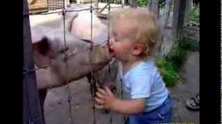 Дети и животные  Веселое слайд шоу