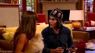 Dog With A Blog - Tyler The Dog Whisperer