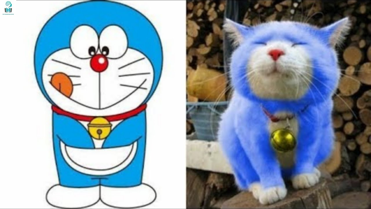 Download 20 Cartoon Characters That Exist In Real Life #5