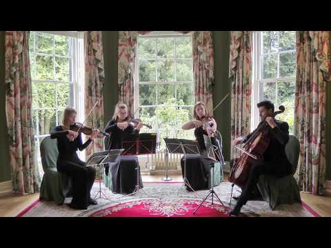 The Wedding String Quartet - Musical Repertoire For String