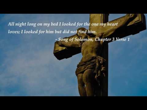 Top Bible Verses on love - In your unfailing love you will...