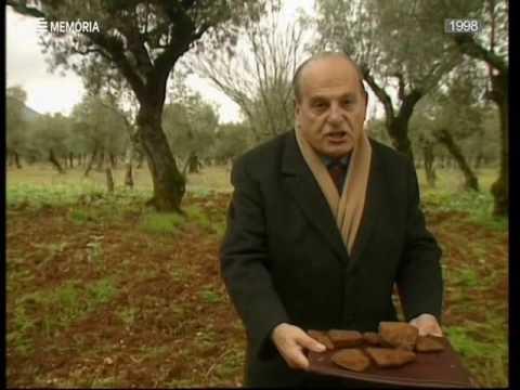 Horizontes da Memória, Os Mistérios de Alvaiázere, 1999