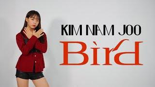 [거울모드/방송댄스] 에이핑크(Apink) 김남주 - Bird cover dance
