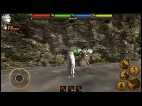 How to find a mate in Ultimate Wolf Simulator By Gluten Free Games