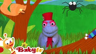 Forest Animals with Spider, Butterflies, Squirrle and More! | BabyTV