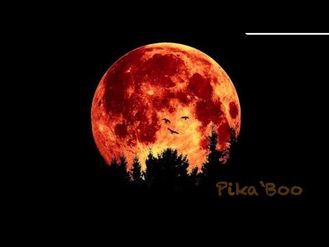 Happy Halloween - Pika`Boo!!!