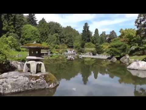 "Japanese Garden in  Washington Park Arboretum Seattle - ""WANDERING & WONDERING"" 2015"