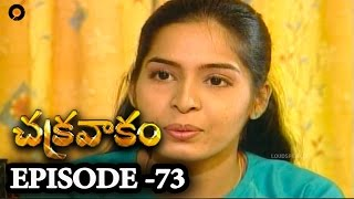 Episode 73 | Chakravakam Telugu Daily Serial