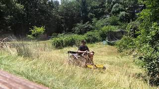 Mowing the Most Overgrown Lawn of My Life ...Hustler Raptor