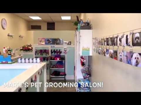 Marie's Pet Grooming Salon