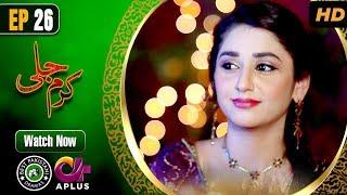 Pakistani Drama | Karam Jali - Episode 26 | Aplus Dramas | Daniya, Humayun Ashraf
