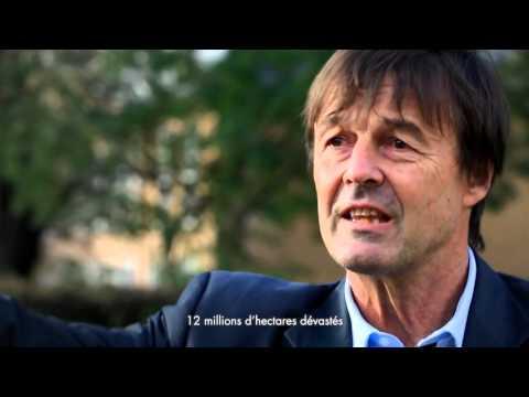 Interview de Nicolas Hulot