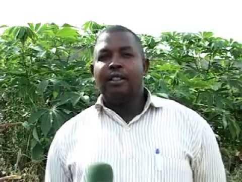 Burundi :Un cadavre découvert à Gihanga