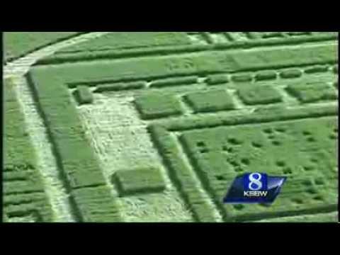 Salinas California Chualar Farm Mysterious Crop Circles