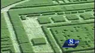 Salinas California Chualar Farm Mysterious Crop Circles