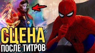 Человек-паук: Через вселенные - разбор сцен после титров.