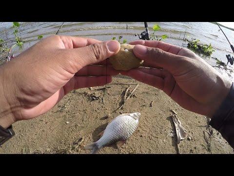 ทริปหาที่ตกปลาหน้าดินหมายธรรมชาติ