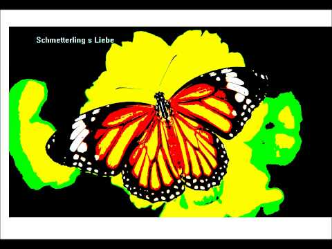 Schmetterling s Liebe