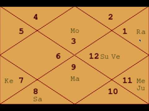 Super Intelligence - Example Charts (25) - Astrology Basics 113