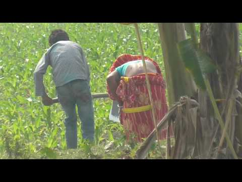 देखिये बिहार के गाँव का माहौल !! Dekhiye Bihar Ke Gaw Ka Mahaul !! Bamboo Art