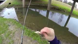 Houston Bass Fishing (39 Degrees) Bayou Bass 720p HD