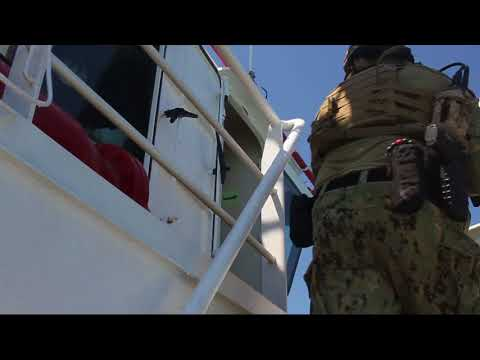 Exercise Sea Breeze 2017 - U.S. Navy SEALs and Ukrainian SOF conduct combined ops