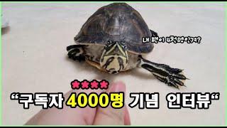 구독자 4000명 기념♥ 거북이의 인터뷰(라 쓰고 도망이라 읽는다.)