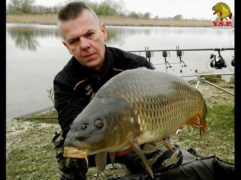 Šarani pod trskom šćukinog bereka / V.S.P. Fishing Team