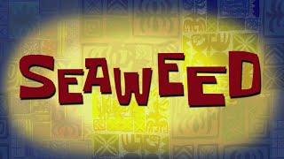 Download Mp3 Spongebob Music: Seaweed