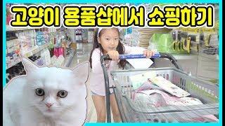 사랑이가 분양받은 고양이를 위해 고양이 용품샵에서 쇼핑…