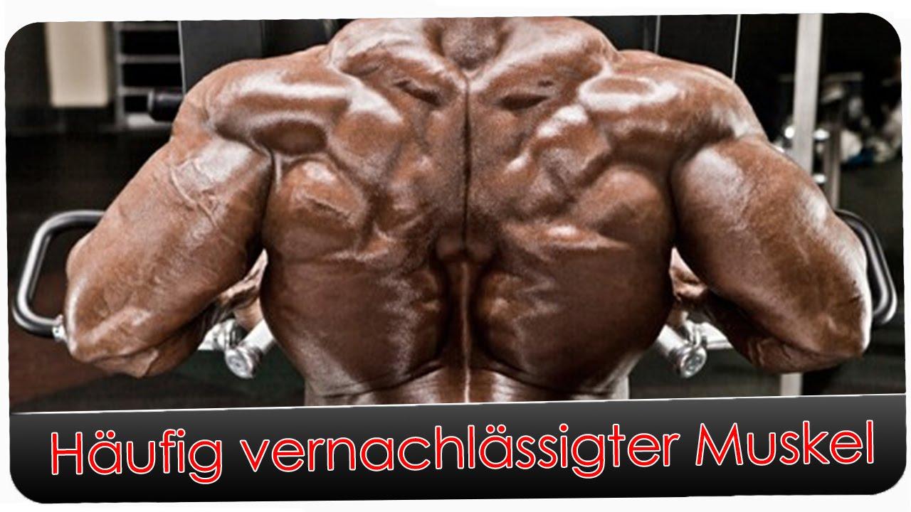 Häufig vernachlässigter Muskel | Rhomboideus - YouTube