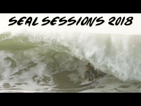 Seal Sessions // December 18 2018