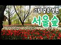 [공원의친구들] 데이트명소 서울숲에서 인생사진 남기자!(서울숲 포토스팟 총 정리) - YouTube