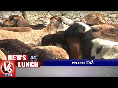 1 PM Headlines   Presidential Elections   Sheep DIstribution   Yoga Diwas   PSLV Trial   V6 News