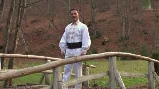 Gabriel Farcas - Ma intorc in satul meu