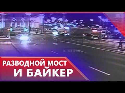 Грифоны Банковского моста Санкт Петербург Скульптуры