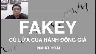 Price Action | Fakey - Làm sao để tìm kiếm lợi nhuận với cú lừa của hành động giá?