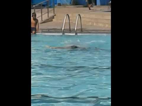 kolam renang tirtomoyo manahan solo youtube rh youtube com