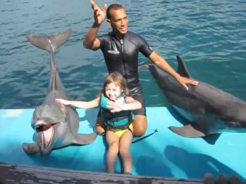 Starla gets picked to star in the Dolphin Show at Ocean World!!