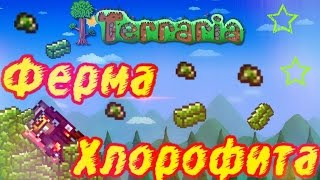 ФЕРМА ХЛОРОФИТА В Terraria Mobile & PC