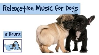 5 HOURS of Relaxation Music for Your Pet Dogs!