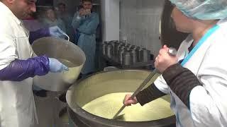 видео: Оборудование мини сыроварни  - технология производства сыра