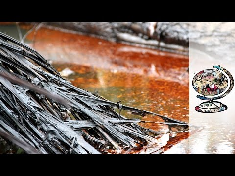 Niger's Appalling Daily Oil Leak Issue (2012)